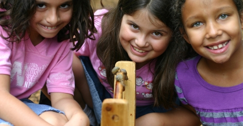 Three girls smile as they look at the handle of a bucket that has three snails they collected on it.